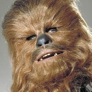 http://theartmad.com/chewbacca-pictures-images-photos/