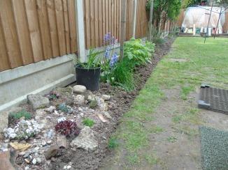 Flat 4 Garden May 16 (3)