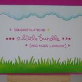 Kim Styles Cards - Lawn Fawn Little Bundle