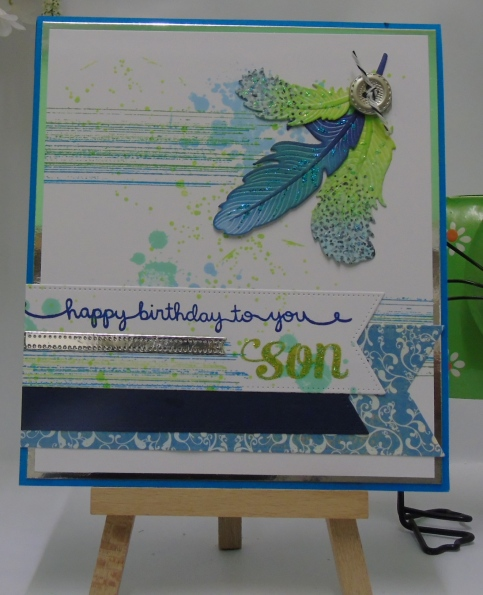 Son's birthday 2016 (1)