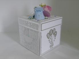 Kim Styles Cards - Exploding Baby Box 3 (1)